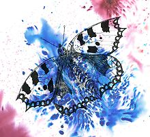 Butterfly  by Isobel Foord-Warren