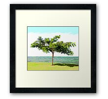 Blurs of the nature	 Framed Print
