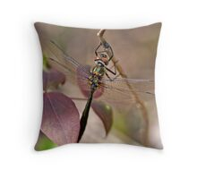 American Emerald Throw Pillow