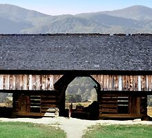 Cades Cove Settlers Barn by LarryB007