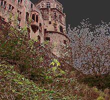 Castle on the hill by Efi Keren