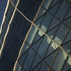 Gherkin reflected by Andrew Jackson