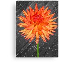 Fabulous Flower Canvas Print