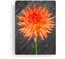 Fabulous Flower Canvas Print