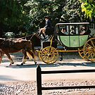 Colonial Williamsburg Carriage Ride by rue2