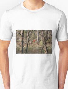 FALL ALONG THE TANEYCOMO T-Shirt