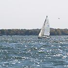 Sailboat Lake Minnetonka by tvlgoddess