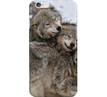 One Big Happy Family iPhone Case/Skin
