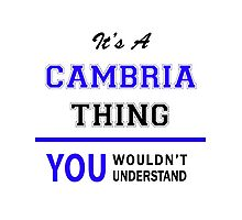 It's a CAMBRIA thing, you wouldn't understand !! Photographic Print