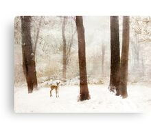 Winter Whimsy Canvas Print