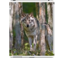 Timber wolf in Forest iPad Case/Skin