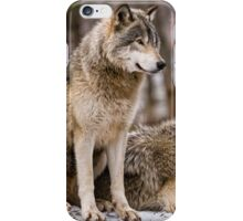 Companions iPhone Case/Skin
