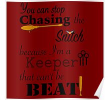 Quidditch Word Play Poster