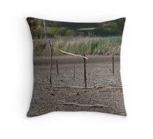 Bird Sanctuary Mannum  Throw Pillow