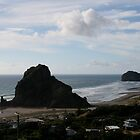 Lion Rock, Piha New Zealand by wendy Wood