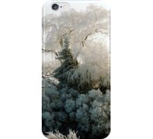 Winter Wonderland #2 iPhone Case/Skin
