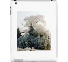 Winter Wonderland #2 iPad Case/Skin