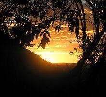 Sunrise on the path by JDPark