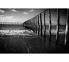 Stinger Nets Photographic Print