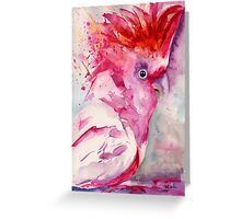 Pink Cockatoo Greeting Card
