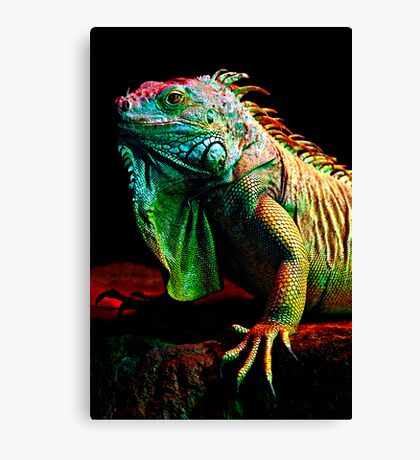 Iguana From The Deep Canvas Print