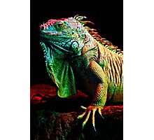 Iguana From The Deep Photographic Print