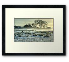 The Frozen Meadow Framed Print