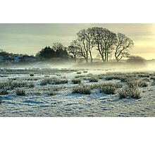 The Frozen Meadow Photographic Print