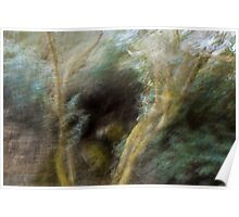 Free Forest Poster