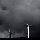 Windmills by Hilary Robertshaw