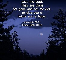 Bible Verse: Jeremiah 29:11 Words of Hope for the Future by Corri Gryting Gutzman