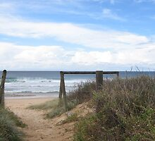 Near Wollongong by alittleelf
