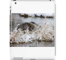 The Great Blue Heron iPad Case/Skin