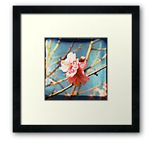 ~ When you are all I see ~ Framed Print