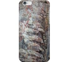Petrified iPhone Case/Skin