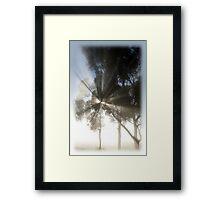 Mighty misty morning Framed Print