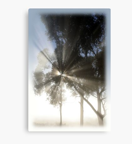 Mighty misty morning Canvas Print