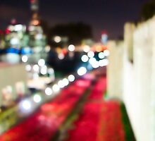 Tower Poppies 07 by Pete Edmunds