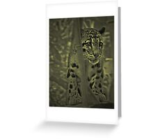 The leopard..... Greeting Card