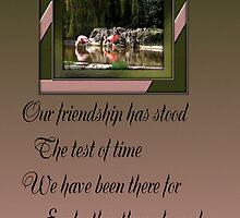 friendship  by cynthiab
