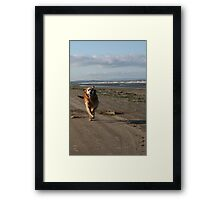 Freedom is... Framed Print