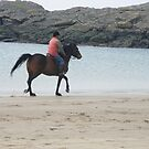 a ride along the beach by 24moonview