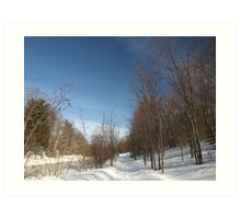 P2030095 Winter scene Art Print