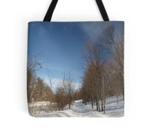 P2030095 Winter scene Tote Bag