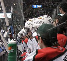 Halifax Mooseheads by Glenn Esau