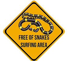 Free of snakes surfing area. Surf caution sign. Dropping in free spot. by 2monthsoff