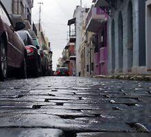 Blue Cobblestone of San Juan by Michael Anderson