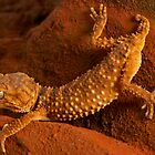 A Lizards Life by Michael Ellem