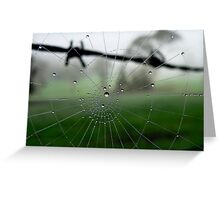 Barbed Wire and Web Dew Drops Greeting Card
