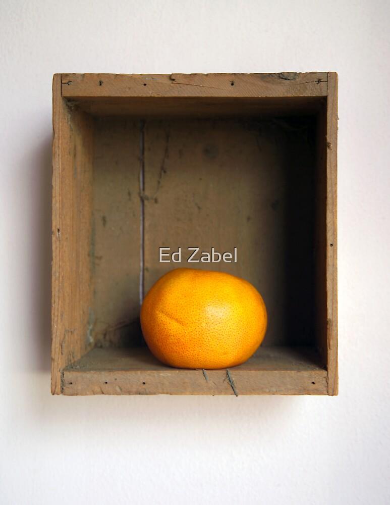 Grapefruit by Ed Zabel